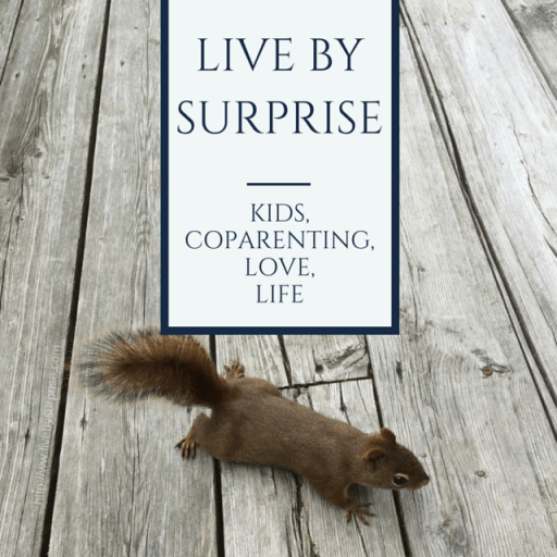 Grab button for Live by Surprise Blog